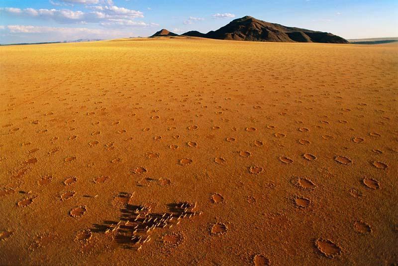 Необычные круги на пастбищах Южной Африки