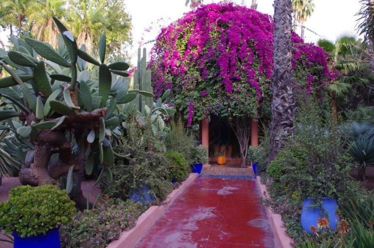 Сад Мажореля в Марракеше