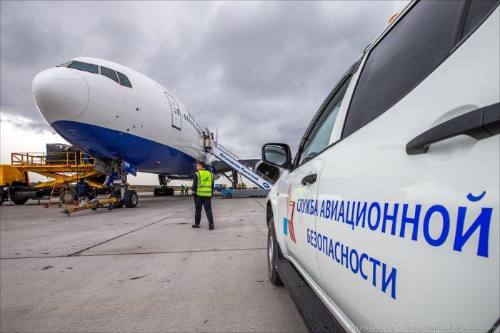 Как обслуживают Боинг-777-200 в аэропорту