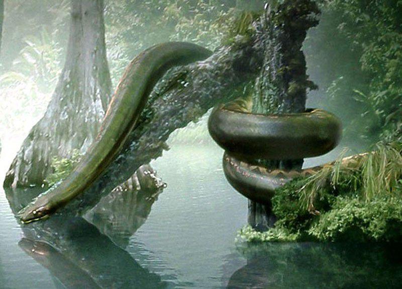 Создания, некогда населявшие нашу планету