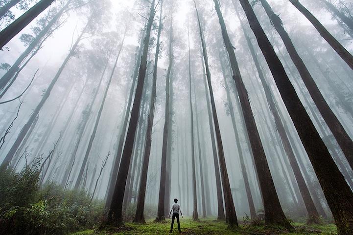 Человек на фоне природы