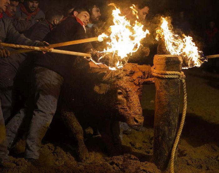 Фестиваль Toro de Jubilo в Испании