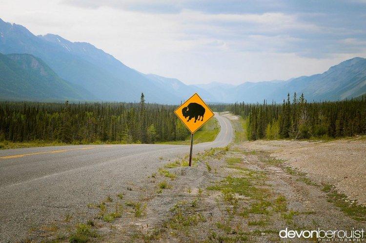 Природа Канады от Девон Беркист