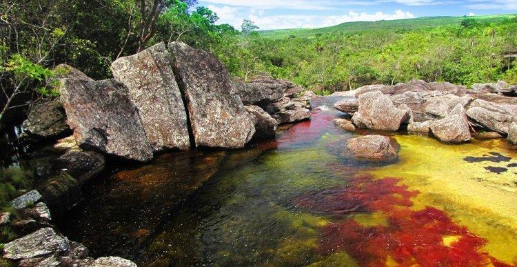 Каньо-Кристалес - река пяти цветов