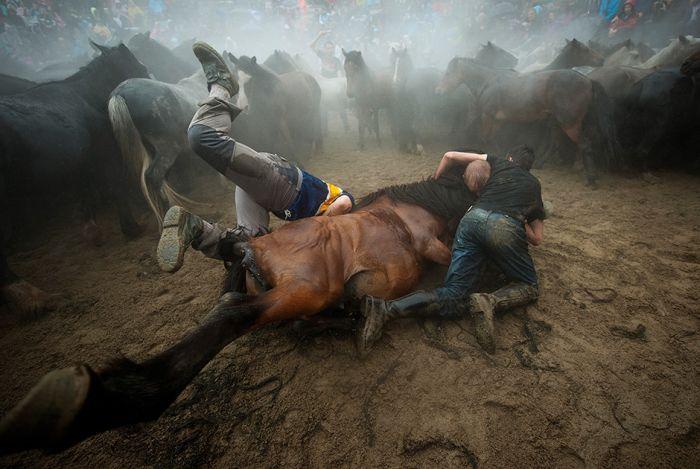 Фотоподборка агентства France-Presse 2014