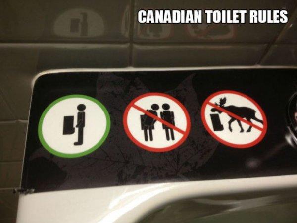 Такое бывает только в Канаде