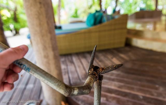Как делают кокосовое масло на Мальдивах