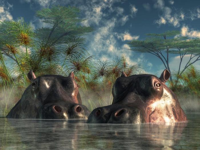 Рисованные древние обитатели Земли