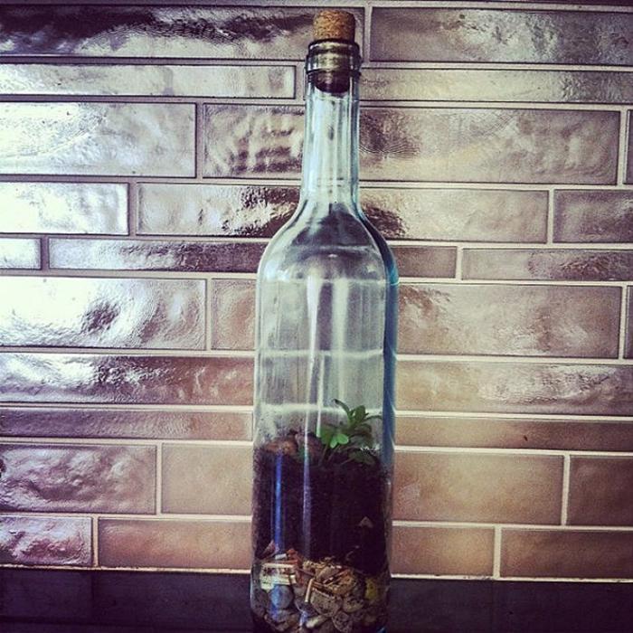 Креативное использование старых бутылок