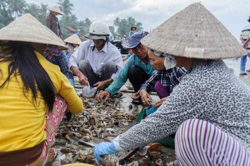 Рыбный рынок в Муй Не, Вьетнам