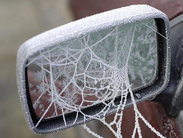 Зима превращает автомобили в произведения искусства