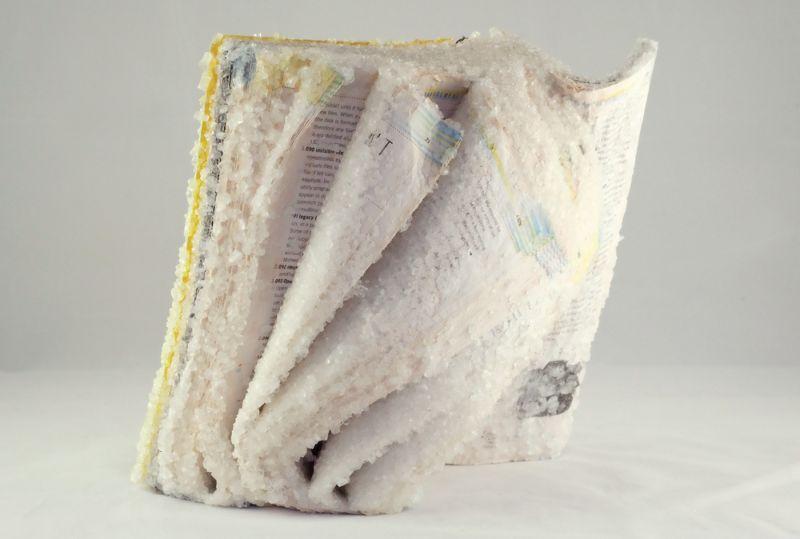 Окаменелые книги от художницы Алексис Арнольд