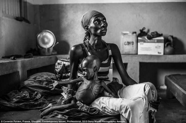 Финалисты фотоконкурса Sony World Photography Awards 2015