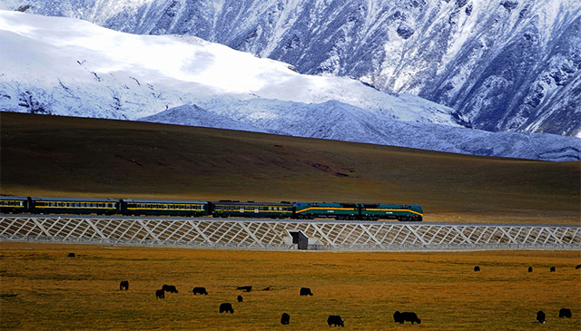 Самые-самые поезда мира и их маршруты