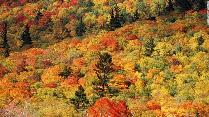 Самые яркие и разноцветные природные пейзажи