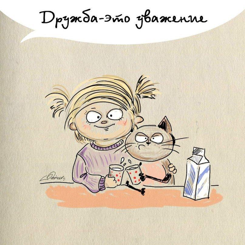 Картинки с котами о дружбе