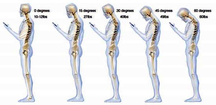 13 интересных фактов о нашем теле