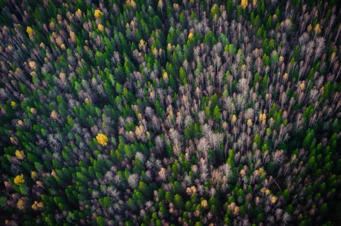 Пейзажи России от зарубежных фотографов