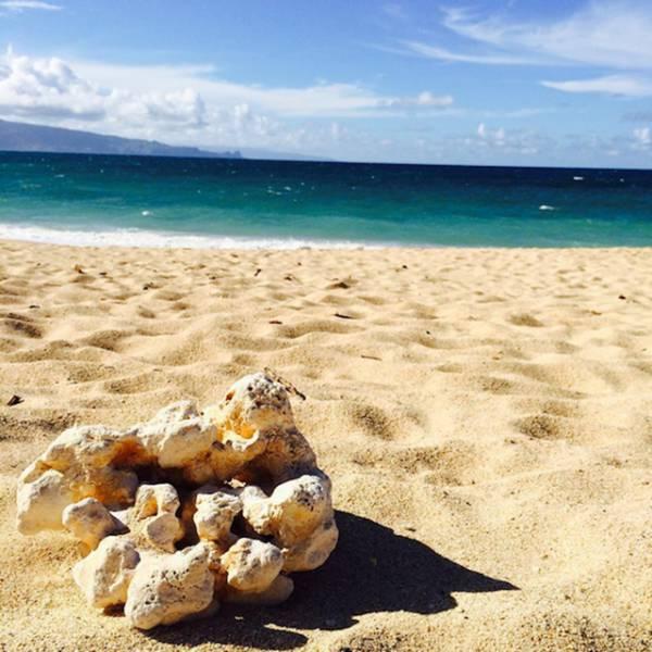 Почему Гавайи пользуются такой популярностью среди туристов