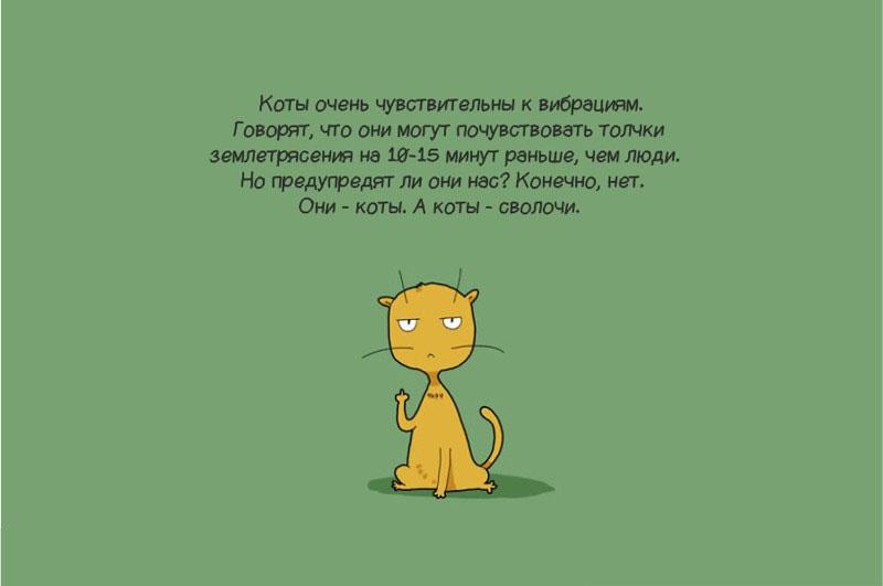 Потрясающие иллюстрации о жизни котов
