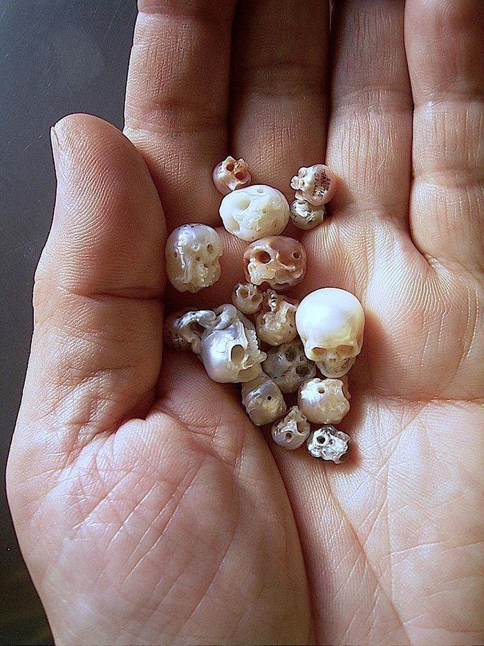 Черепа из жемчужин от японского мастера резьбы по перламутру Синдзи Накаба