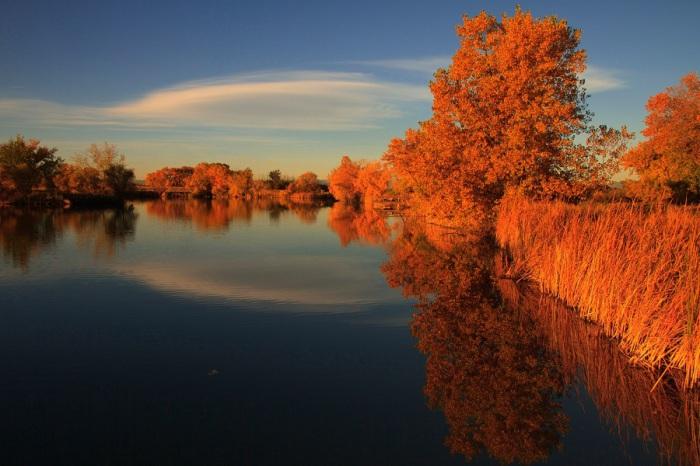 Чудові фотографії дзеркальних пейзажів