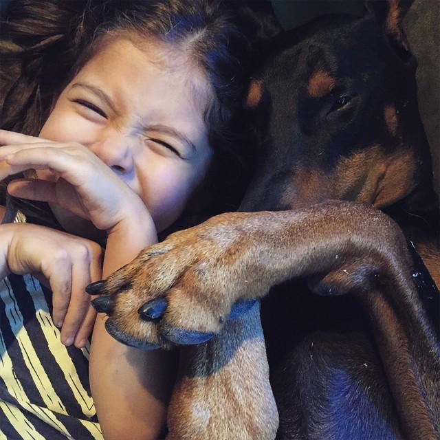 Удивительная дружба девочки и добермана