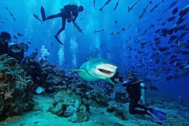 10 опасных мест для плавания