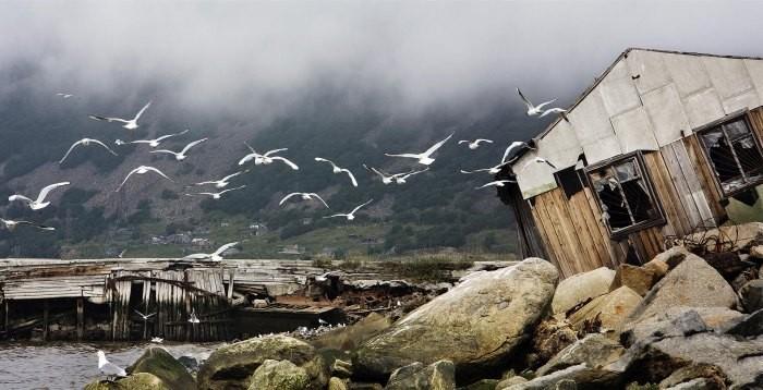 Лучшие снимки с фотоконкурса Самая красивая страна