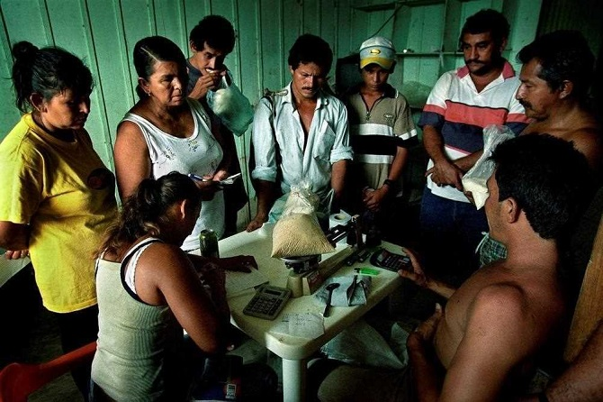 Путешествие кокаина от полей до ноздрей в фотографиях