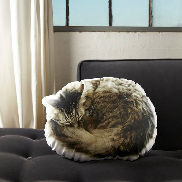 Подарки для любителей кошек