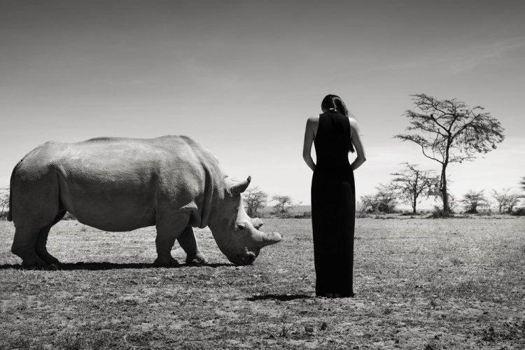 Азиатские модели позируют с исчезающими животными