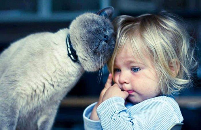 Дети и домашние животные