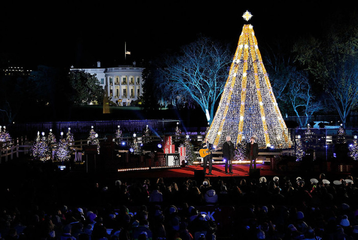 Новогодние елки из разных городов мира