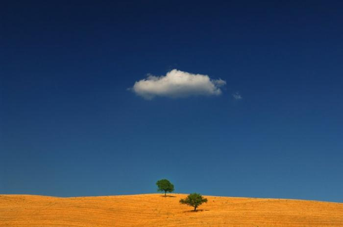 Умиротворение и красота природы на фотографиях