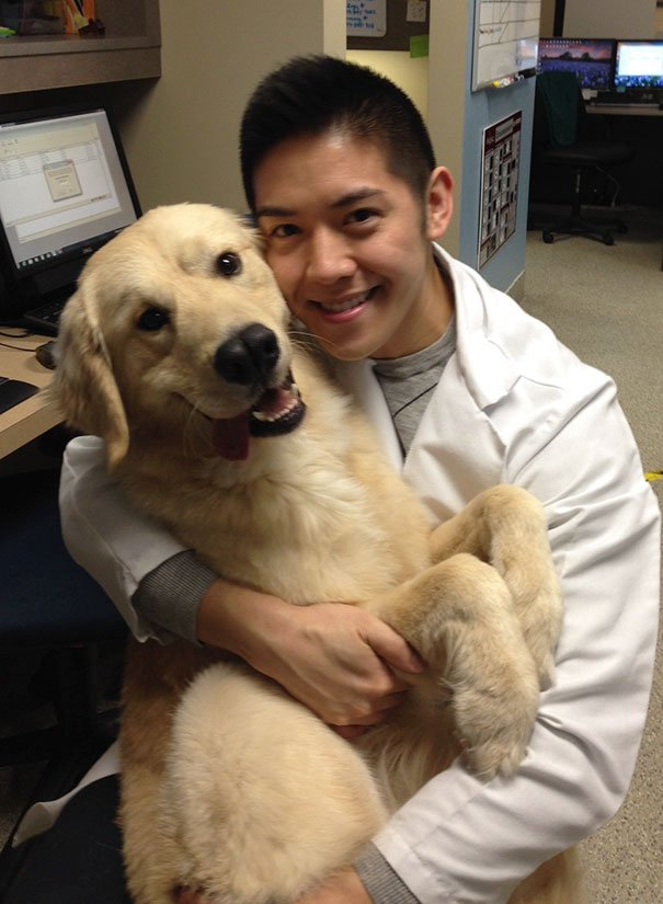Почему ветеринар – лучшая профессия на свете
