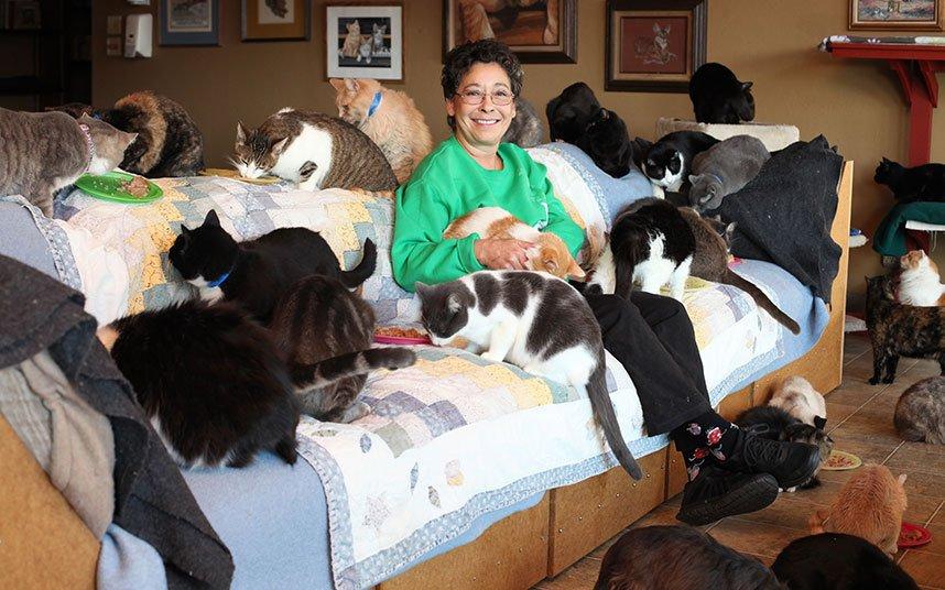 Женщина, в доме которой живёт более 1000 кошек