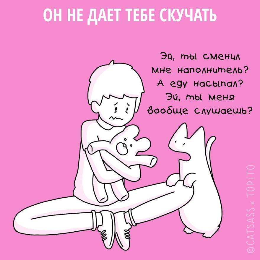 Как кот помогает пережить расставание
