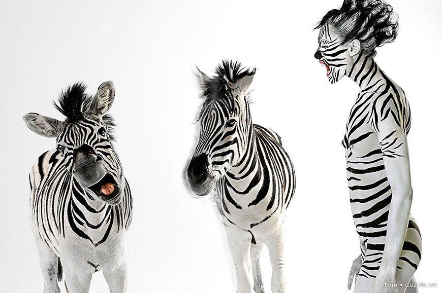 Бодиарт с участием диких животных
