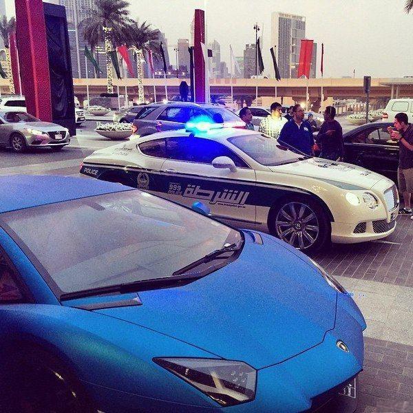 15 снимков Дубая, которые нам трудно понять