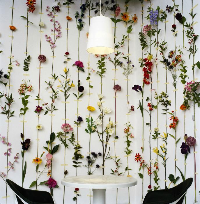 Живые цветы на стену фото дорогой подарок в день рожденья женщине г.москва