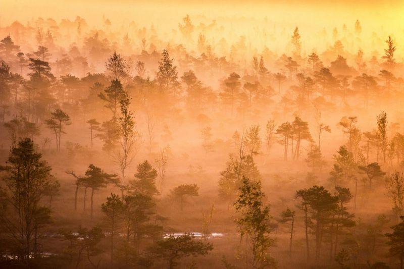 Кемерский национальный парк в Латвии