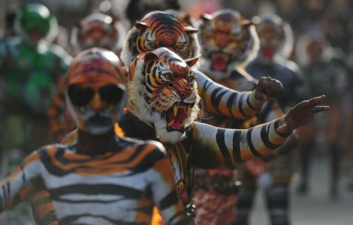 Тигриный фестиваль Пули Кали в Индии