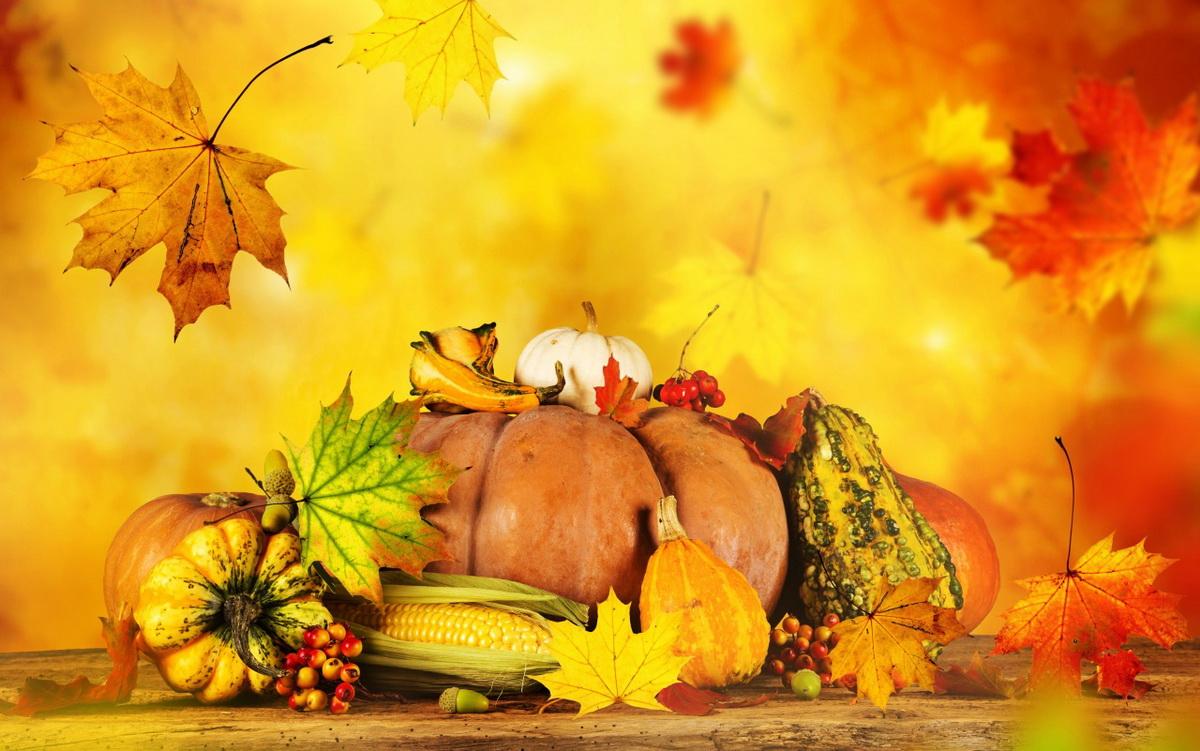 История появления и традиции празднования Хэллоуина