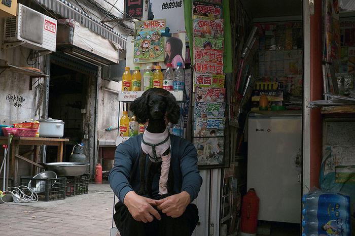 30 удачных кадров уличной фотографии с идеально выбранным моментом