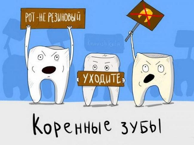 Буквальный смысл популярных фраз в забавных картинках