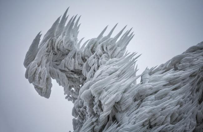 30 фото о том, что зима творит чудеса покруче фотошопа
