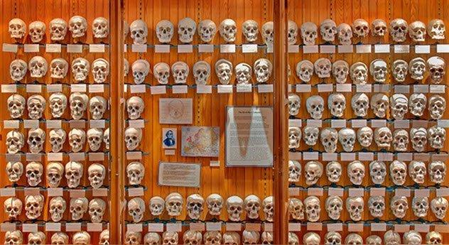 Своеобразные музеи, в существование которых сложно поверить
