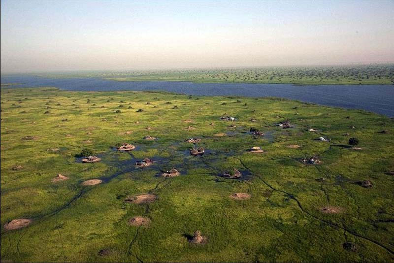 Болота Судд в Южном Судане