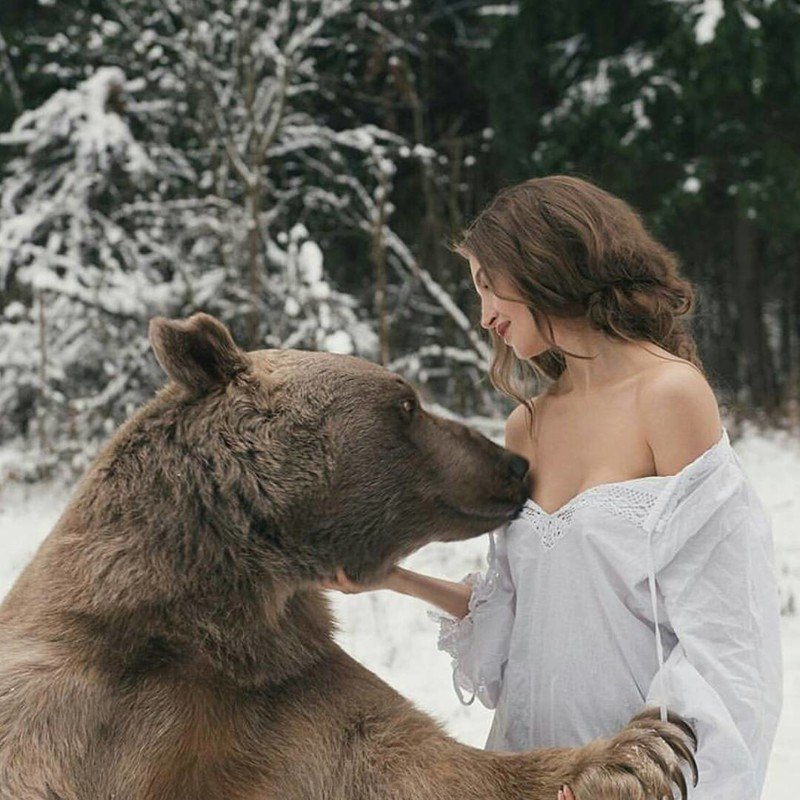 Медведь Степан и его жизнь в русской семье